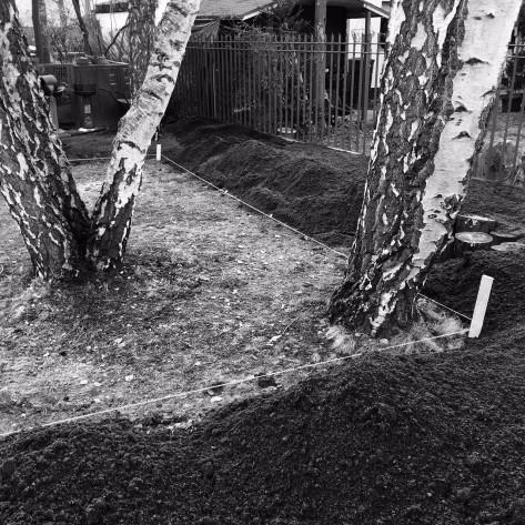 Detail Rahmen mit Bestandsbäumen