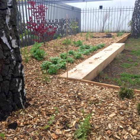 Final: Vorgarten mit Holzeinfassungen