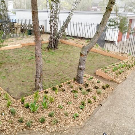Vorgarten nach Mulchung